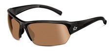 11527 Shiny Black / Photochromic V3 Golf