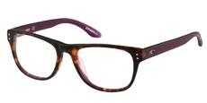 161 Matte Tort / Purple