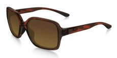 931205 TORTOISE/brown gradient polarized